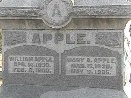 LYONS APPLE, MARY ANN - Champaign County, Ohio | MARY ANN LYONS APPLE - Ohio Gravestone Photos