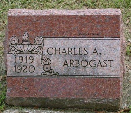ARBOGAST, CHARLES ARTHUR - Champaign County, Ohio | CHARLES ARTHUR ARBOGAST - Ohio Gravestone Photos