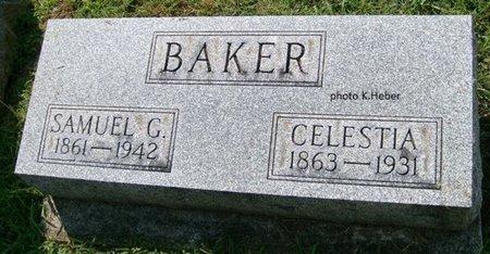 BAKER, CELESTIA - Champaign County, Ohio | CELESTIA BAKER - Ohio Gravestone Photos