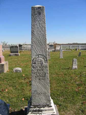 BALDWIN, DANIEL - Champaign County, Ohio | DANIEL BALDWIN - Ohio Gravestone Photos