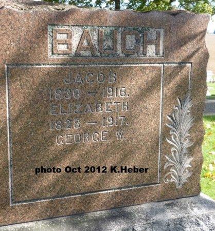 BAUGH, ELIZABETH - Champaign County, Ohio | ELIZABETH BAUGH - Ohio Gravestone Photos