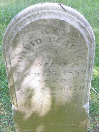 BEAVER, DAVID - Champaign County, Ohio   DAVID BEAVER - Ohio Gravestone Photos