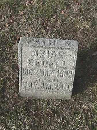 BEDELL, OZIAS - Champaign County, Ohio | OZIAS BEDELL - Ohio Gravestone Photos