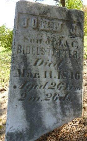 BIDELSTETTER, JOHN J - Champaign County, Ohio | JOHN J BIDELSTETTER - Ohio Gravestone Photos