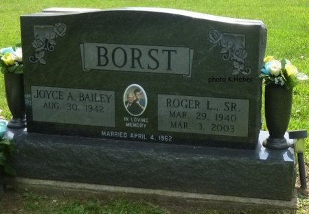 BAILEY BORST, JOYCE A - Champaign County, Ohio   JOYCE A BAILEY BORST - Ohio Gravestone Photos