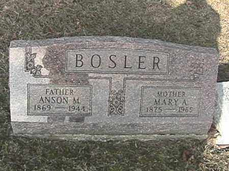 BOSLER, MARY ALICE - Champaign County, Ohio | MARY ALICE BOSLER - Ohio Gravestone Photos
