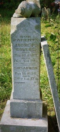 ZIRKLE BOWERS, SUSANNAH - Champaign County, Ohio   SUSANNAH ZIRKLE BOWERS - Ohio Gravestone Photos
