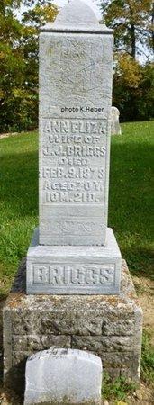 BRIGGS, ANN ELIZA - Champaign County, Ohio | ANN ELIZA BRIGGS - Ohio Gravestone Photos