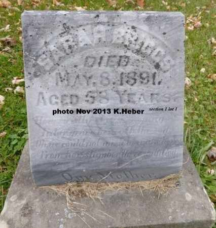 BRIGGS, SARAH - Champaign County, Ohio | SARAH BRIGGS - Ohio Gravestone Photos