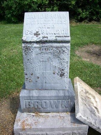 BROWN, DAVID - Champaign County, Ohio | DAVID BROWN - Ohio Gravestone Photos