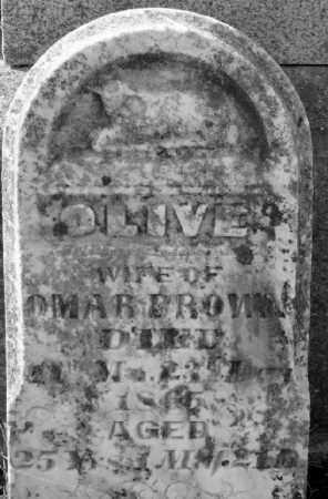BROWN, OLIVE - Champaign County, Ohio | OLIVE BROWN - Ohio Gravestone Photos