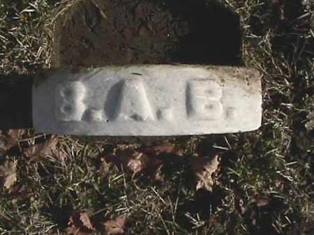 BRUBAKER, BARBARA A. - Champaign County, Ohio | BARBARA A. BRUBAKER - Ohio Gravestone Photos