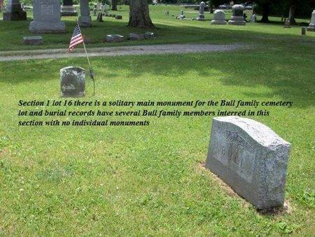 BULL, INFANT MALE - Champaign County, Ohio | INFANT MALE BULL - Ohio Gravestone Photos