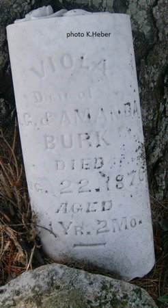 BURKE, VIOLA - Champaign County, Ohio | VIOLA BURKE - Ohio Gravestone Photos