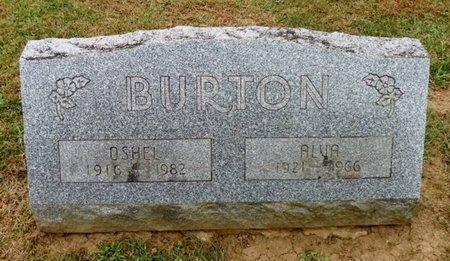 BURTON, ALVA - Champaign County, Ohio | ALVA BURTON - Ohio Gravestone Photos