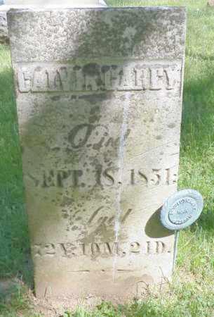 CAREY, CALVIN - Champaign County, Ohio   CALVIN CAREY - Ohio Gravestone Photos