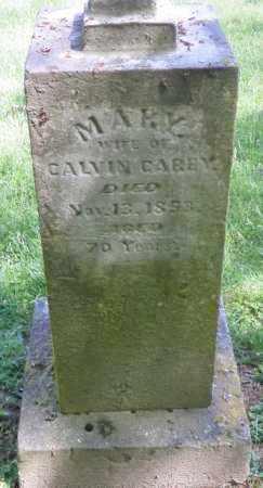 CAREY, MARY - Champaign County, Ohio | MARY CAREY - Ohio Gravestone Photos