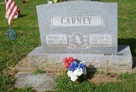 CARNEY, SYLVIA E - Champaign County, Ohio | SYLVIA E CARNEY - Ohio Gravestone Photos