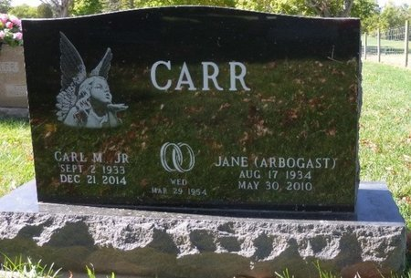 ARBOGAST CARR, JANE - Champaign County, Ohio | JANE ARBOGAST CARR - Ohio Gravestone Photos
