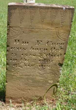 CARY, WILLIAM F. - Champaign County, Ohio | WILLIAM F. CARY - Ohio Gravestone Photos