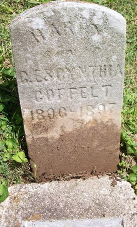 COFFELT, HARRY - Champaign County, Ohio | HARRY COFFELT - Ohio Gravestone Photos