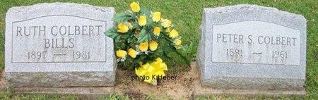 COLBERT, PETER SMITH - Champaign County, Ohio | PETER SMITH COLBERT - Ohio Gravestone Photos