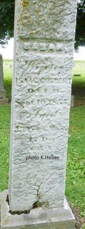 COLBERT, SARAH - Champaign County, Ohio   SARAH COLBERT - Ohio Gravestone Photos