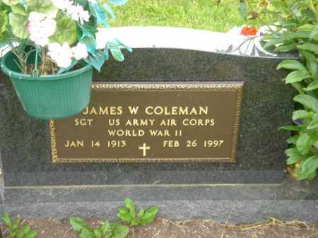COLEMAN, JAMES W. - Champaign County, Ohio   JAMES W. COLEMAN - Ohio Gravestone Photos