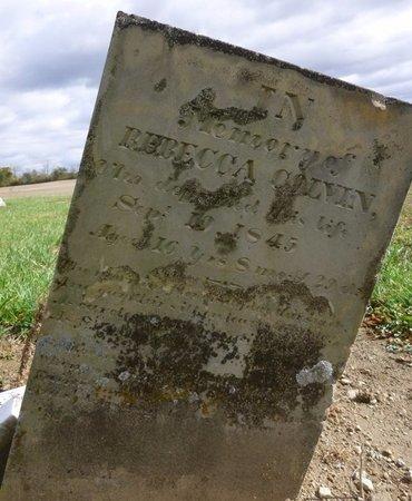 COLVIN, REBECCA - Champaign County, Ohio | REBECCA COLVIN - Ohio Gravestone Photos