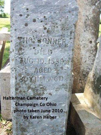 CONNER, THOMAS - Champaign County, Ohio   THOMAS CONNER - Ohio Gravestone Photos