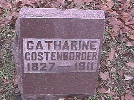 COSTENBORDER, CATHARINE - Champaign County, Ohio | CATHARINE COSTENBORDER - Ohio Gravestone Photos