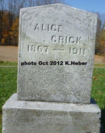 ANDREWS CRICK, ALICE MAY - Champaign County, Ohio   ALICE MAY ANDREWS CRICK - Ohio Gravestone Photos