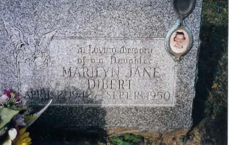 DEBERT, MARILYN J - Champaign County, Ohio   MARILYN J DEBERT - Ohio Gravestone Photos