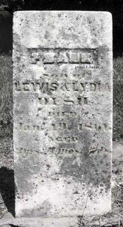 DESH, FRANK - Champaign County, Ohio   FRANK DESH - Ohio Gravestone Photos