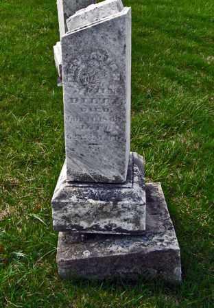 DILTZ, MELLATIAH - Champaign County, Ohio | MELLATIAH DILTZ - Ohio Gravestone Photos