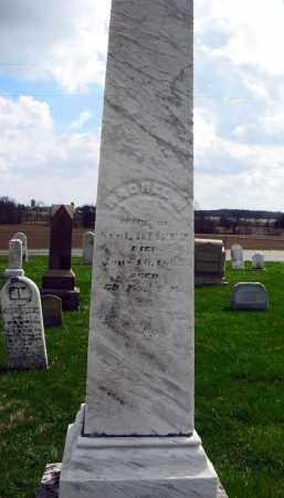 STEVENSON DILTZ, RACHEL - Champaign County, Ohio | RACHEL STEVENSON DILTZ - Ohio Gravestone Photos