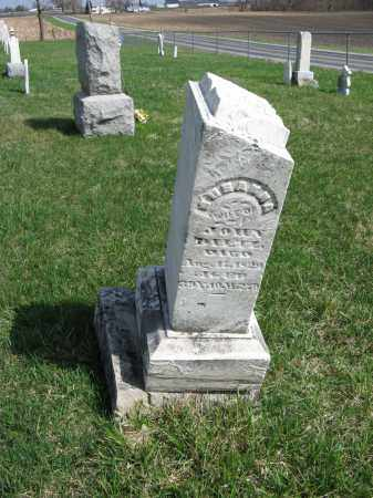 DILTZ, SUSANNA - Champaign County, Ohio   SUSANNA DILTZ - Ohio Gravestone Photos