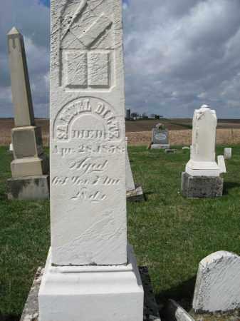 DILTZ, SAMUEL - Champaign County, Ohio   SAMUEL DILTZ - Ohio Gravestone Photos