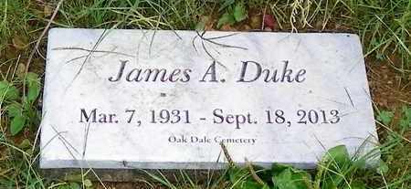 DUKE, JAMES R. - Champaign County, Ohio   JAMES R. DUKE - Ohio Gravestone Photos