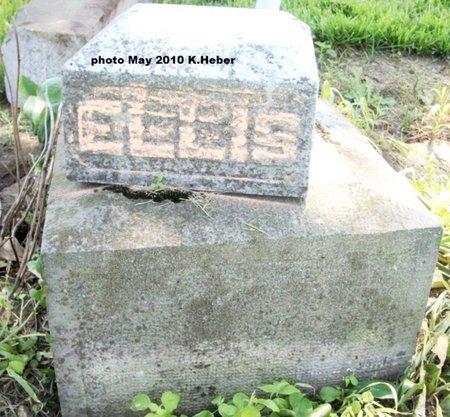 ELLIS, UNKNOWN - Champaign County, Ohio   UNKNOWN ELLIS - Ohio Gravestone Photos