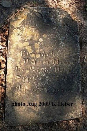 EVILSIZOR, ELIZABETH - Champaign County, Ohio | ELIZABETH EVILSIZOR - Ohio Gravestone Photos
