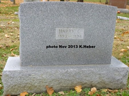 EVILSIZOR, HARRY C - Champaign County, Ohio | HARRY C EVILSIZOR - Ohio Gravestone Photos