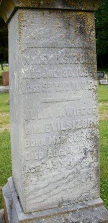 EVILSIZOR, JULIA ANN - Champaign County, Ohio | JULIA ANN EVILSIZOR - Ohio Gravestone Photos