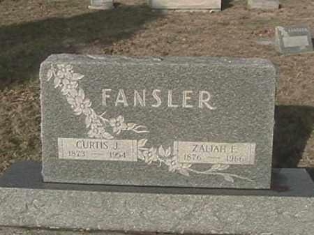 FANSLER, ZALIAH ELLEN - Champaign County, Ohio | ZALIAH ELLEN FANSLER - Ohio Gravestone Photos