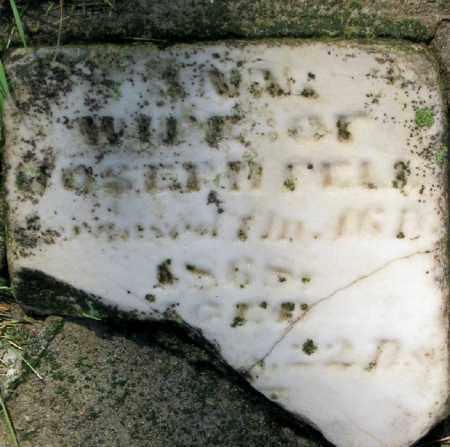 LAMBORN FELL, ANN - Champaign County, Ohio | ANN LAMBORN FELL - Ohio Gravestone Photos