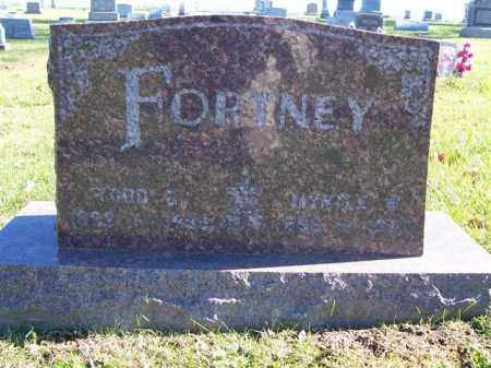 FORTNEY, TODD G - Champaign County, Ohio | TODD G FORTNEY - Ohio Gravestone Photos