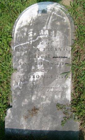 ARBOGAST FRANK, SARAH - Champaign County, Ohio | SARAH ARBOGAST FRANK - Ohio Gravestone Photos
