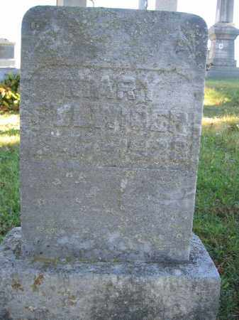 FULWIDER, MARY - Champaign County, Ohio | MARY FULWIDER - Ohio Gravestone Photos
