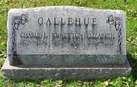 GALLEHUE, CHARLIE E - Champaign County, Ohio | CHARLIE E GALLEHUE - Ohio Gravestone Photos
