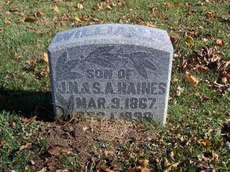 HAINES, WILLIAM - Champaign County, Ohio | WILLIAM HAINES - Ohio Gravestone Photos